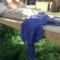 Mélange Bleuet