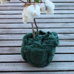 Cache pot / Vide poche eucalyptus en Lin brut