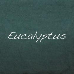 Mélange Eucalyptus